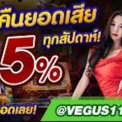 Vegus1118889's profile picture