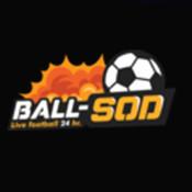Ball_sod1's profile picture