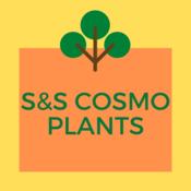 ss_cosmo's profile picture