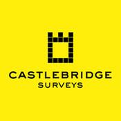 castlebridgesurvey's profile picture