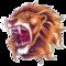 Lion66's profile picture