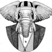 FlippingVintage's profile picture