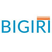 bigiriusa's profile picture