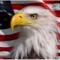 USflip's profile picture