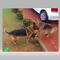 RajkumarH1's profile picture