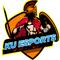 EsportK's profile picture