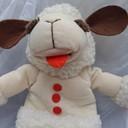 TEDDY_T's profile picture