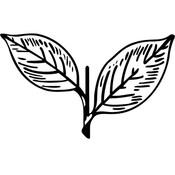 aiadmkindia's profile picture