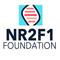nr2f1foundation's profile picture