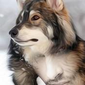 MagickArt's profile picture