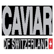 Caviarof306's profile picture