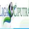 ligaciputra's profile picture