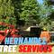 hernandeztreeservice's profile picture