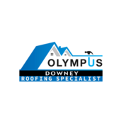 olympusroofing85's profile picture