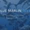 BluemarL's profile picture