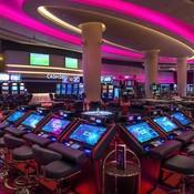 casinositees's profile picture